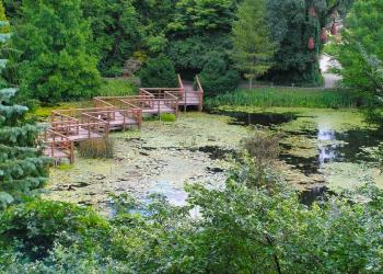 Bolestraszyce - arboretum
